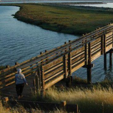 Don Edwards San Francisco Bay