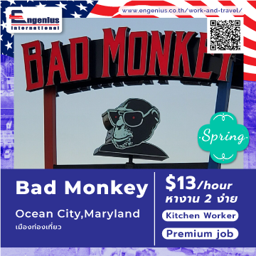 2-Cover-ABad-Monkey-kitchen-360x360-px